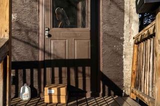 ギャラリー:新型コロナで打撃を受けた食品業界、米ミネソタ州の貧困層を支援 写真15点
