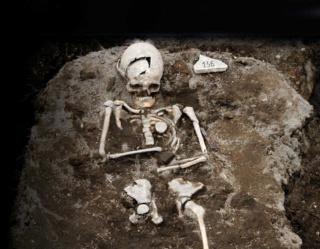 ギャラリー:腐らない死体、伸びる爪…本当だった「吸血鬼の証拠」 画像6点