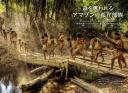 アマゾンの孤立部族