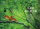 北海道 鳥を待つ森
