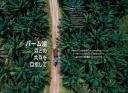 パーム油と森林保護