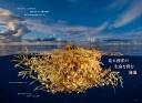 "<div class=""bpimage_title"">生命を育む""海藻の海""</div>"