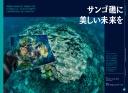 "<div class=""bpimage_title""><u><a href=""/atcl/news/21/042000197/"" target=""_blank"">サンゴ礁に美しい未来を</a></u></div>"