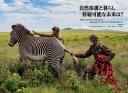 "<div class=""bpimage_title""><u><a href=""/atcl/news/21/062100312/"" target=""_blank"">ケニア 自然保護の未来</a></u></div>"