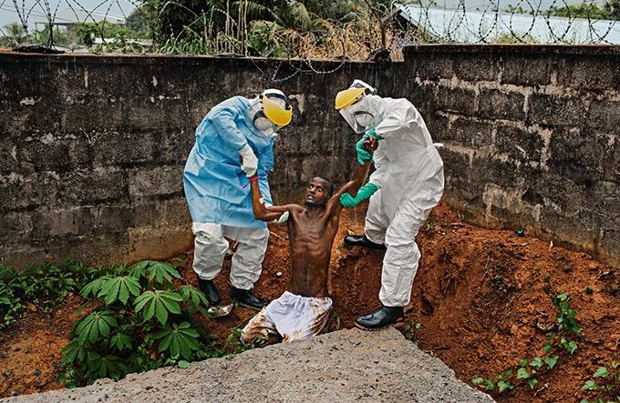 エボラはどこに潜むのか