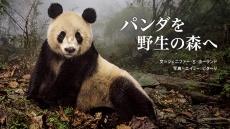 自然と人間 パンダを野生の森へ