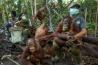 親を失ったオランウータンが自力で生きていくための技術と行動を教える「森林学校」。人間から病気が感染しないように、保護施設の職員たちはマスクをする。