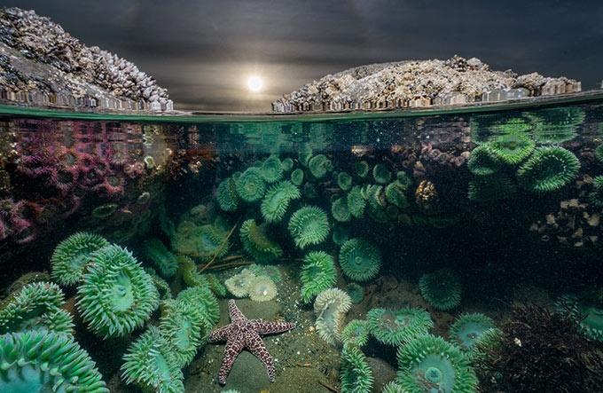 自然と人間 気候変動 自然公園の選択