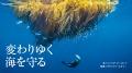 変わりゆく海を守る 米国の海洋保護区