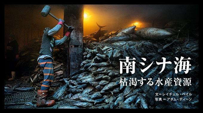沿岸の国々の主張が重なり合う南シナ海。領有権争いで乱獲に拍車がかかり、世界屈指の豊かな漁場が崩壊の危機に直面している。