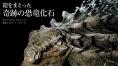 鎧をまとった奇跡の恐竜化石