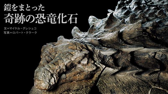 カナダで鎧竜の新種の化石が発見された。保存状態が抜群で、体は今も鎧のような装甲に包まれている。