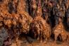 溶岩に含まれている鉄分が酸化して、さまざまな鉱物に変化する。解けたチョコレートのように見えるマヌヌイ洞窟の壁面もそうしてつくられた。
