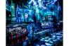 <b>ネットゲームにのめり込む</b><br>韓国のソウルには、1時間100円ほどで一晩中ゲームができる場所がある。韓国では超高速インターネットの回線使用料が安く、普及率が高い。そのため生活が破壊されるほどオンラインゲームに夢中になる人たちもいて、政府が治療費を負担している。米国精神医学会は、ゲームにのめり込んでやめられない状態を障害と認めていないが、インターネットゲーム障害を「今後研究を進めるべき病態」に挙げた。