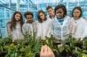 ワーヘニンゲン大学研究センターの講師や学生たちは、知識こそがオランダ最大の輸出品だと口をそろえる。ここで学ぶ大学院生の半数は外国出身者で、深刻な食料不足が頻発する国から来た学生もいる。