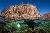 カリフォルニア湾のエスピリトゥ・サント島付近を潜水する、海洋生物学者のオクタビオ・アブルト。保護区の成功の鍵は、地域社会が握っているという。「まずは誇りをもってもらうことから始めます」