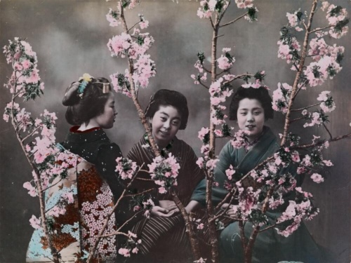 エリザ・シドモアが撮影した日本の桜と女性たち