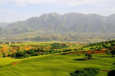【ニュース】210万年前の石器を中国で発見、アフリカ以外最古