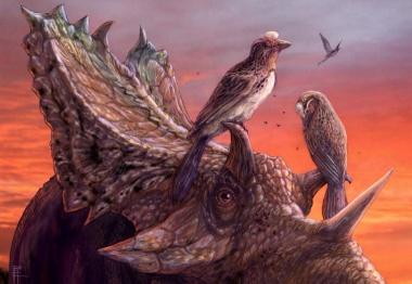 【ニュース】古代の鳥の新種を発見、北米最大級