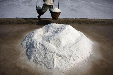 【ニュース】9割の食塩からマイクロプラスチックを検出