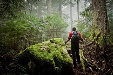 【ニュース】連休中に注意 ハイキングに多い「迷子遭難」