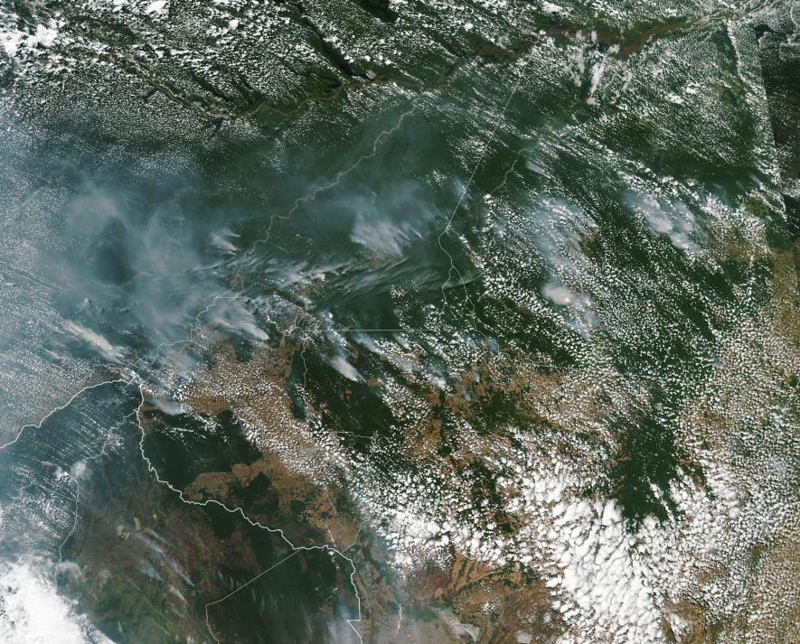 アマゾン森林火災、原因は「過剰な伐採」と専門家
