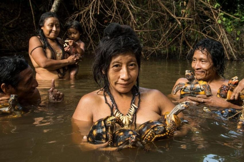 【ギャラリー】アマゾン、森の先住民の知られざる日常 写真20点(写真クリックでギャラリーページへ)