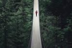 吊り橋の上で