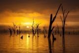 夜明けのムルワラ湖