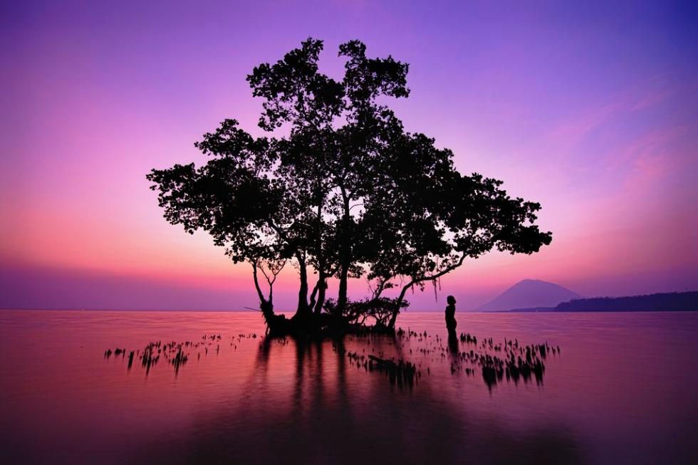 楽園の夕焼け