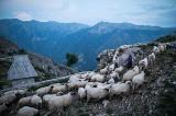 ルコミル村、時が止まったボスニアの隠れ里 写真21点