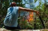 """アマゾンの森を燃やす人々に密着、""""悪人""""牧場主の手口と現実 写真10点"""