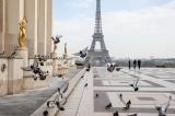 新型コロナ、「不気味なほど空っぽ」なパリの苦境と希望と 写真14点
