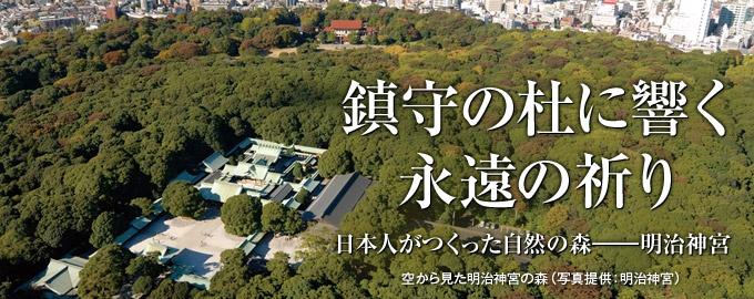 東京の街中にあって広大な緑に覆われた「明治神宮の森」。かつて、ここは樹木のほとんどない荒れ地だった。90年前、人々はどんな思いで自然の森をつくろうとしたのか。そこに現代の私たちが森との関わりを考える鍵が見つかるかもしれない。