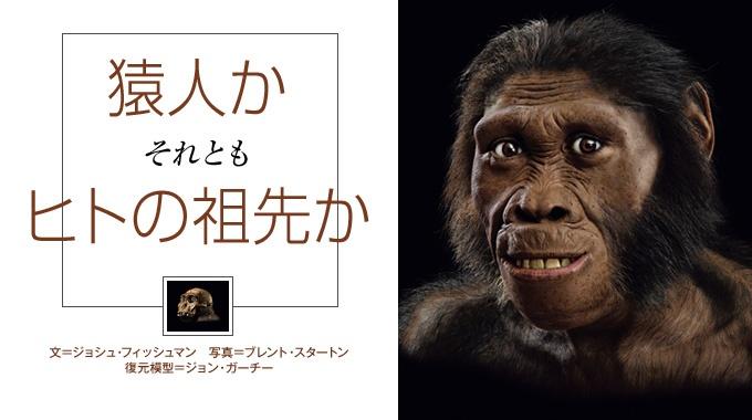 南アフリカ共和国で見つかった『セディバ猿人』の化石。人類の起源を解く鍵となるか。