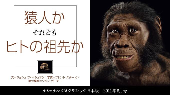猿人か ヒトの祖先か