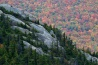 キャタマウント山の岩場に走る裂け目を、針葉樹が彩る。ふもとに広がる森は、冬の訪れをまえに最後の輝きを放っている。