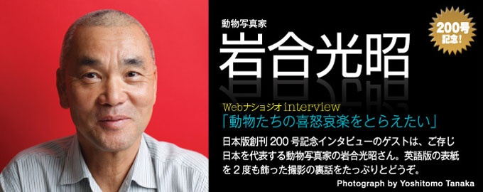 『ナショナル ジオグラフィック日本版』創刊200号記念インタビューのゲストは、動物写真家の岩合光昭さん。日本版ができる以前、岩合さんは日本人では唯一、その作品が『ナショナル ジオグラフィック』の表紙を2度も飾った方である。本誌人気コーナー「レンズの裏側」のWeb版スペシャル企画として、撮影の裏話をたっぷりとどうぞ――。(インタビュー・文=高橋盛男/写真=田中良知)