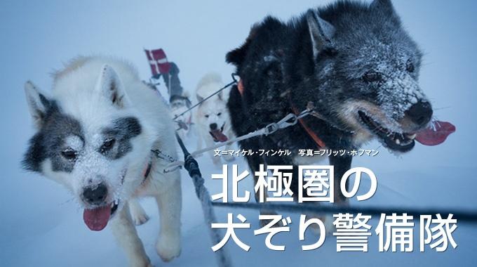 低賃金で休みなし。それでも若い隊員と犬たちは、闇と氷に閉ざされたグリーンランドを駆け抜ける。