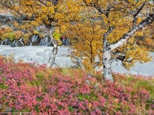 アイスランドの絶景 4 クビート川と色づく木々