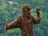 驚異のハチ人間
