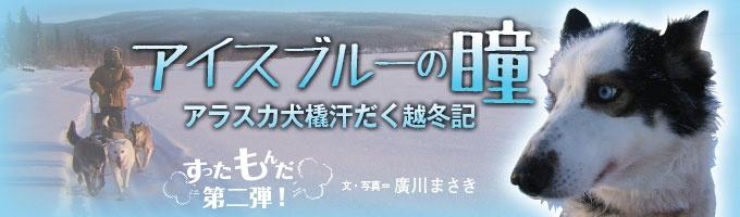『ウーマンアローン』で開高健ノンフィクション賞を受賞した著者が、アラスカ・マッキンリー山の麓、ミンチュミナ湖畔で、障害を背負う犬たちを含む約40匹の橇犬たちとひと冬を過ごした体験記。個性豊かな動(人)物が繰り広げる、抱腹絶倒七転八倒の大人気すったもんだシリーズの第2弾!