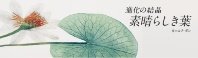 進化の結晶 素晴らしき葉