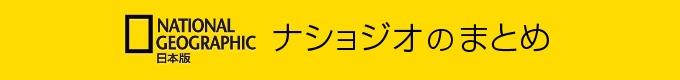 2016年1月15日から2月14日まで、東京・芝浦のGallery 916で野町和嘉さんの写真展が開催されます(★入場無料★)。写真展では、『極限高地』にも収録されたアンデスの写真も掲示されます。大きく引き伸ばされたプリントで野町さんの写真を見られるチャンスです。ナショジオとの関係は?