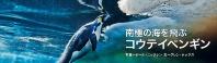 海を飛ぶコウテイペンギン