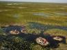 アフリカ最大級の湿原スッド (南スーダン共和国)