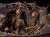 フランスの小島で出土した石器時代の女性人骨