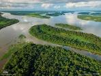 ボノボとゴリラを隔てたコンゴ川(コンゴ)
