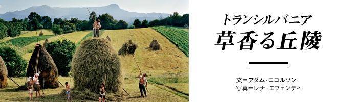 トランシルバニア 草香る丘陵