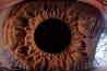 超拡大した「目」